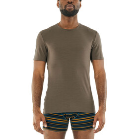 Icebreaker Anatomica T-shirt Col ras-du-cou Homme, driftwood